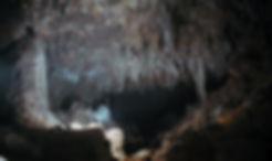 Mexico cenote exploration