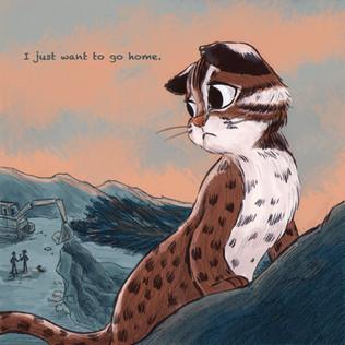 Leopard cat in Taiwan