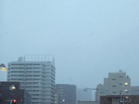 初雪....