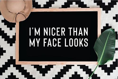 I'm nicer than my face looks, sarcastic svg life, Funny SVG, Cat Dog svg, I'm ni