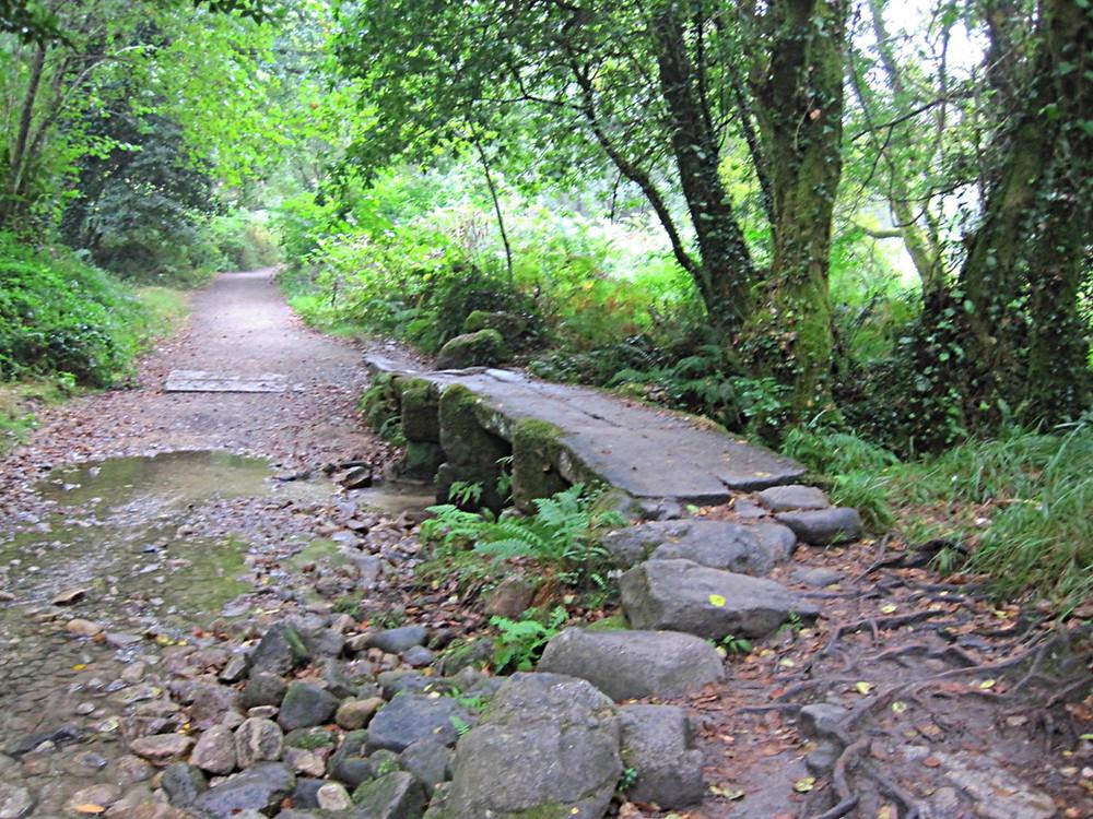 Camino de Santiago, between Pontevedra and Caldas de Reis, Spain