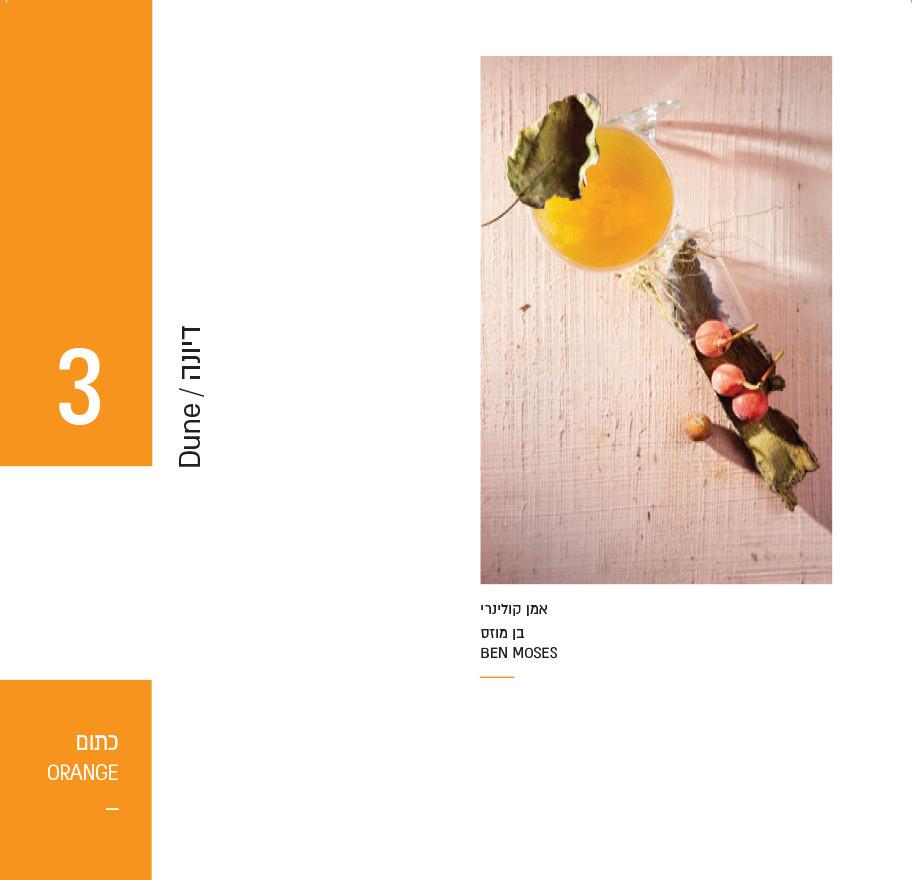 catalog asdod tast-15.jpg