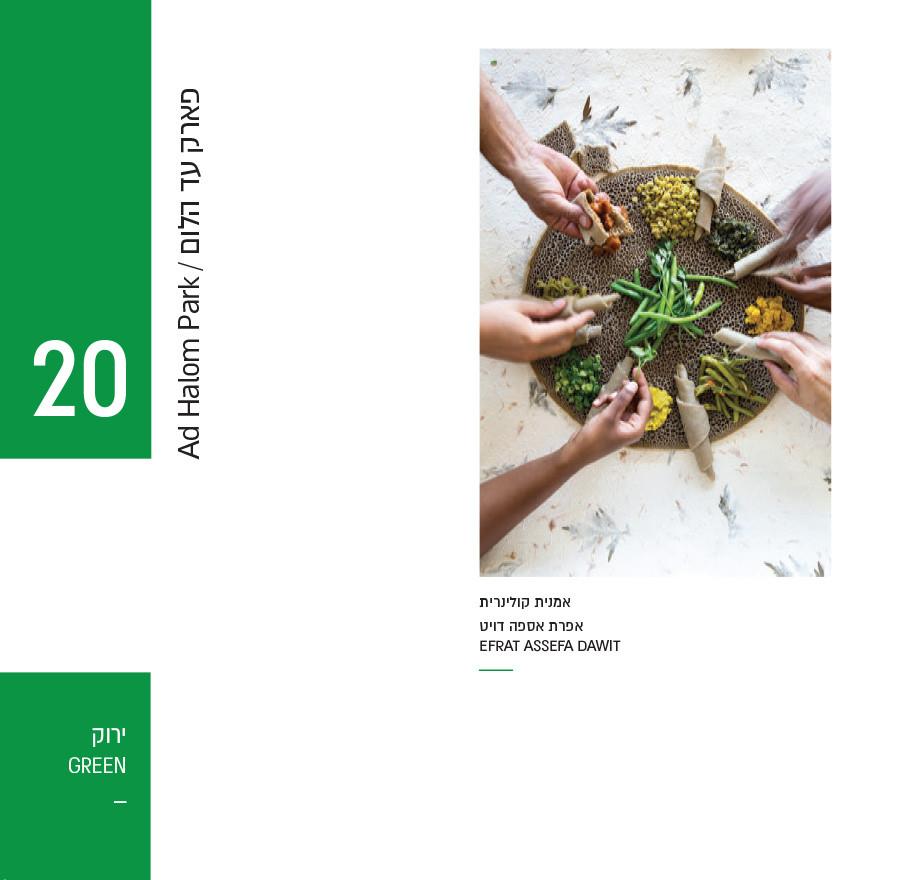 catalog asdod tast-49.jpg