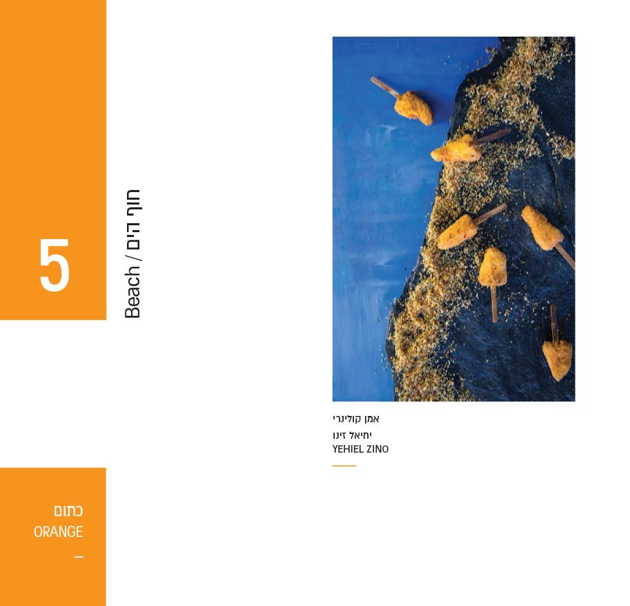 catalog asdod tast-19.jpg