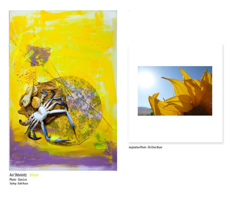 avi shteintz yellow.jpg