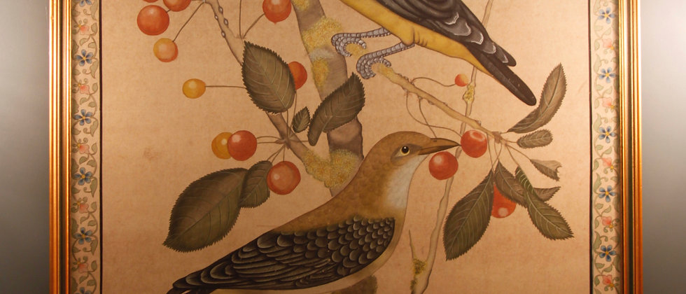 Large 20th Century Watercolour on Silk of Golden Oriole Birds Eating Fruit