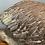 Thumbnail: Very Heavy, Beautifully Detailed Terracotta Pelican