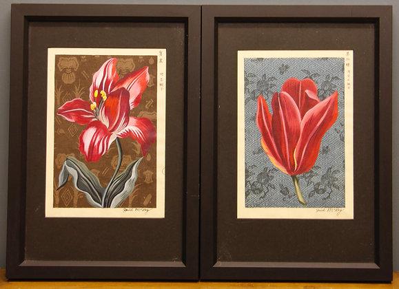 Framed Botanical Studies painted over Original Japanese Designs