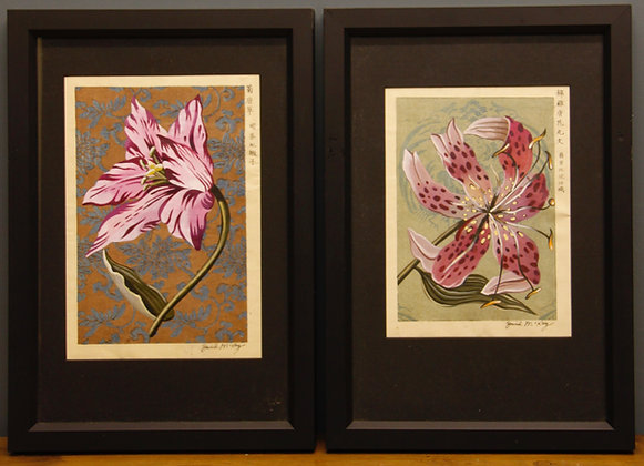 Framed Botanical Studies painted on Original Japanese Designs.