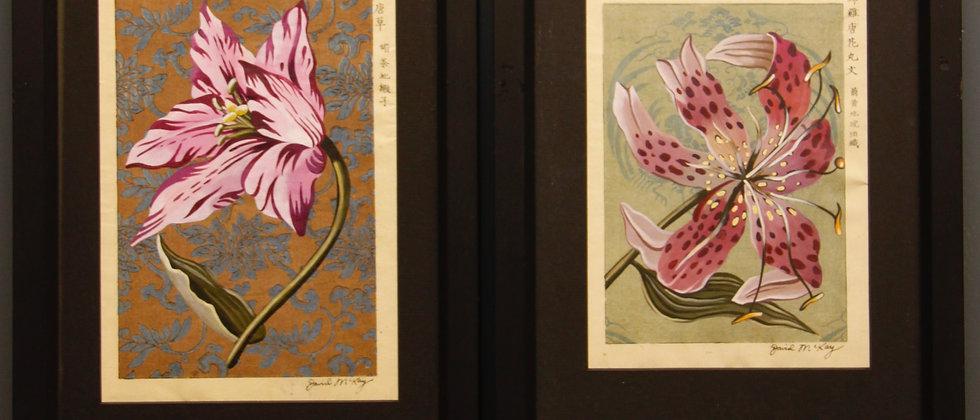 Framed Botanical Studies painted on Original Japanese Designs.