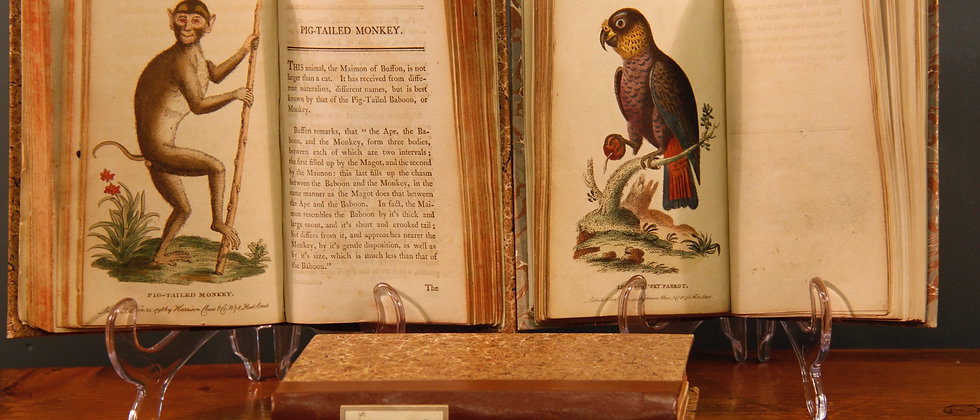 Naturalist Pocket Magazine 1799-1800 Original 4 Volumes. 199 Hand Coloured Print