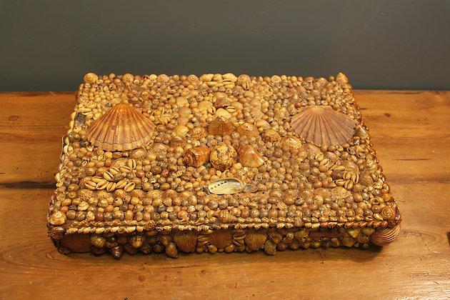 Decorative Shell Box