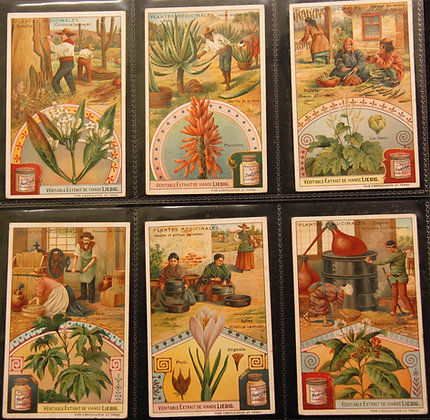 Original 1895 Advertising Collectable Cards