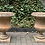 Thumbnail: Pair of Terracotta Garden Urns