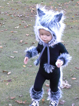 Baby Wolf 1.jpg