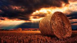 Haystack Roll.jpg