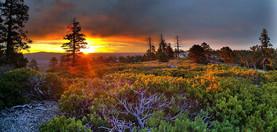 sunrise-1949939__480.jpg