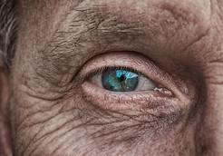 Old Man Eye.jpg