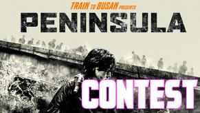 """Contest """"PENINSULA"""""""