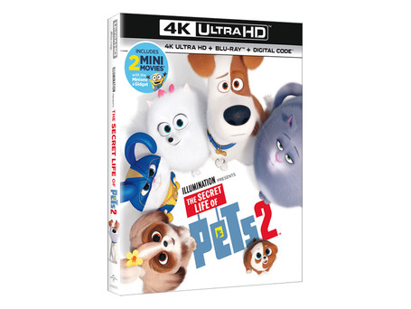 THE SECRET LIFE OF PETS 2 IS COMING TO DIGITAL, 4K ULTRA HD, BLU-RAY™ & DVD THIS AUGUST!