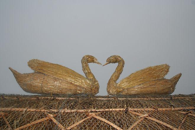 Straw swans.jpg