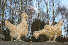 Two Straw Hens