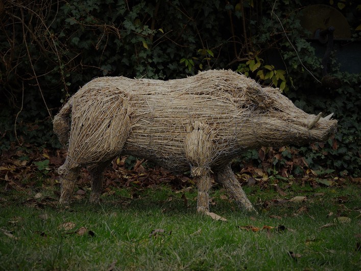 Straw Wild Boar