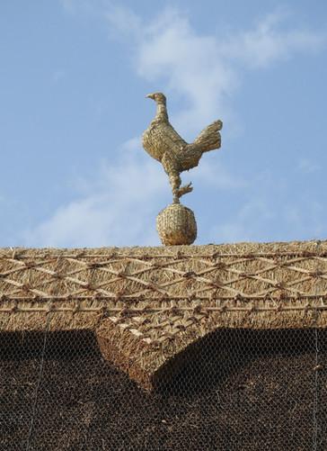 Tottenham Cockeral