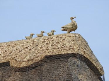 Straw Duck Family