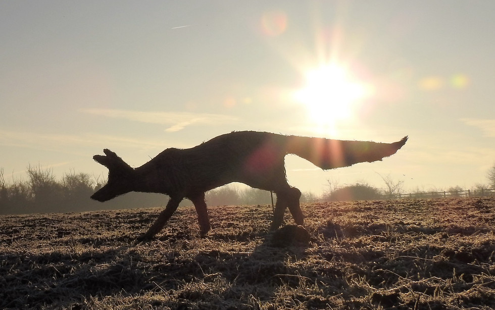Straw Stalking Fox