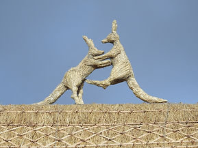 Straw fighting kangaroos.JPG