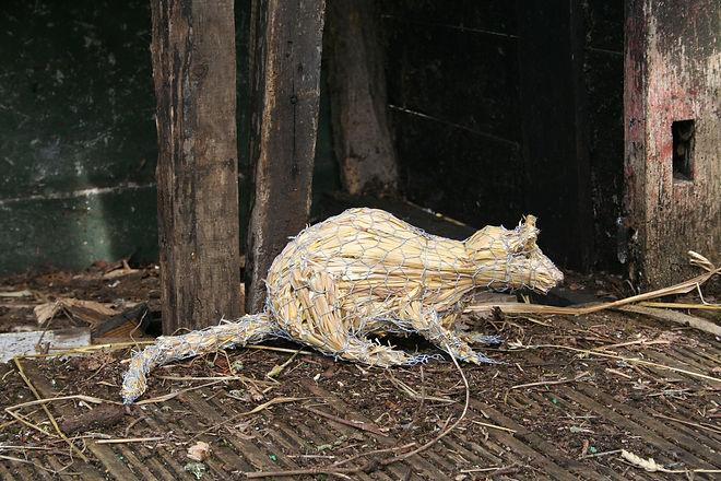 straw rat 007.JPG