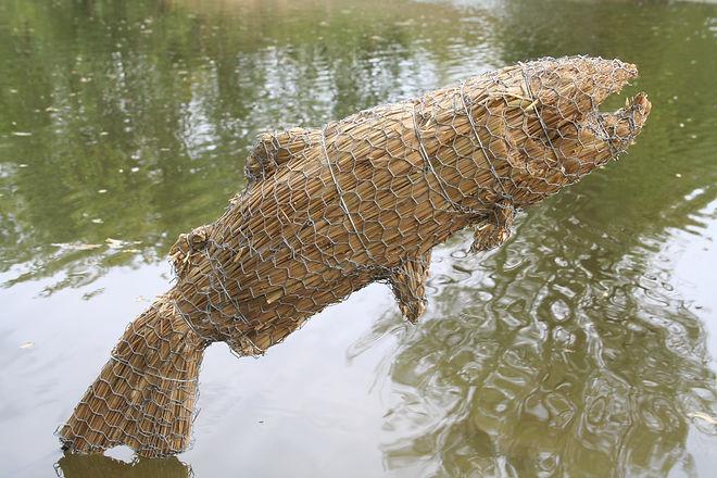 Straw Fish.JPG