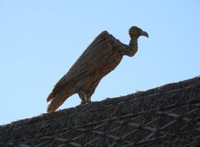 Straw Vulture