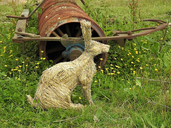 Sitting Rabbit.JPG