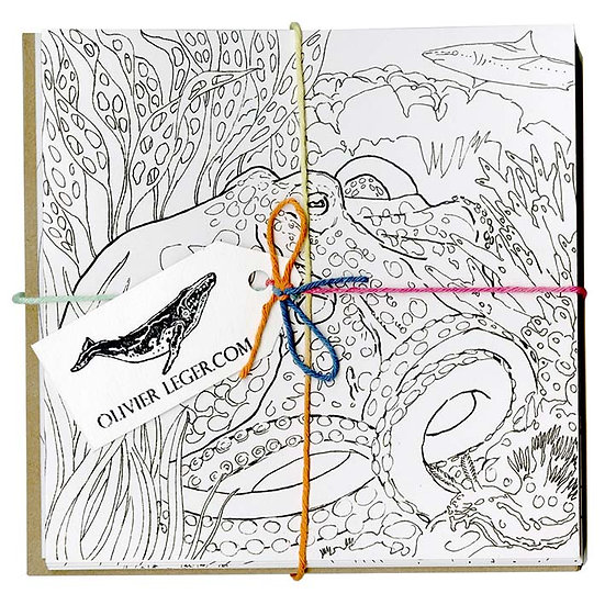 Greetings cards pack - Colouring Collection