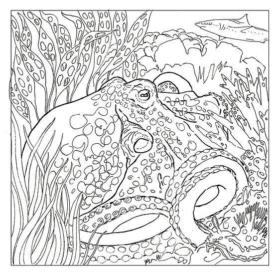 Release the Kraken! Colouring Sheet