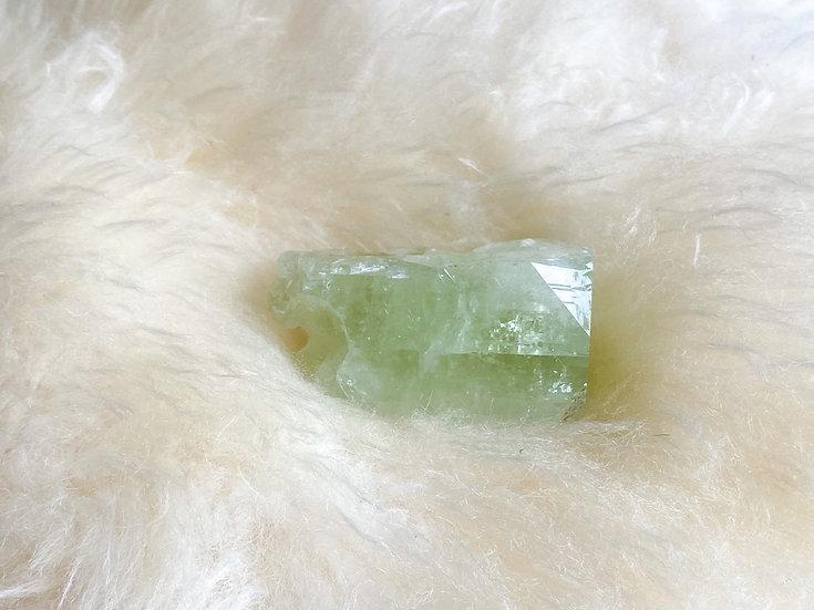 Apofilite verde