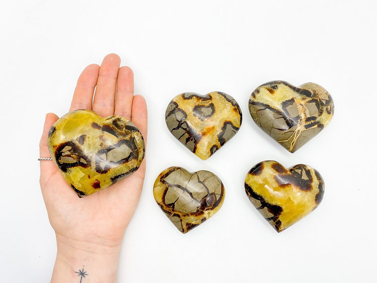 Coração Septarian Nodular