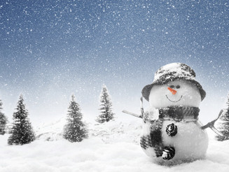 Winter is coming! - Is your home prepared?