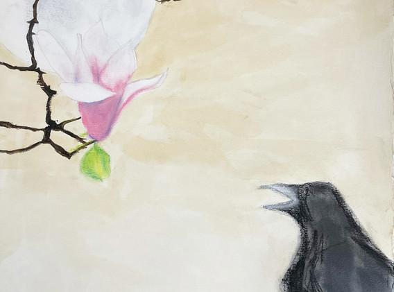 Crow, Magnolia and Moon