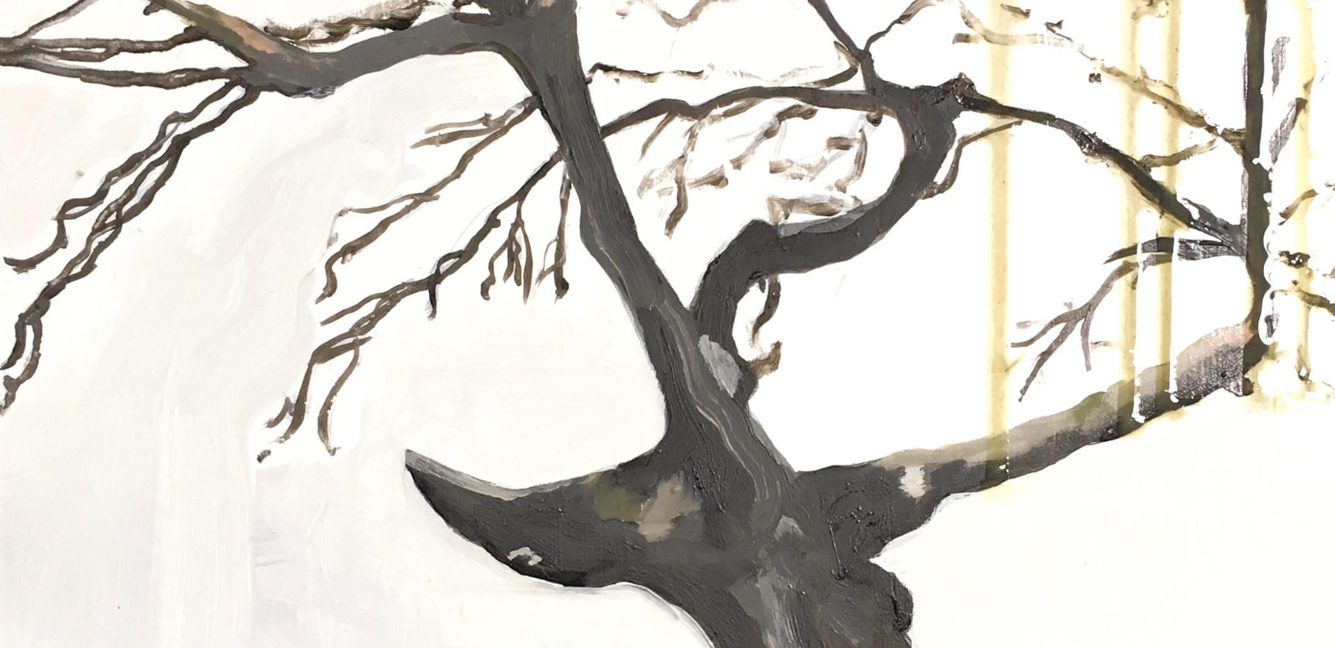 Raven Tree Sings Skyward