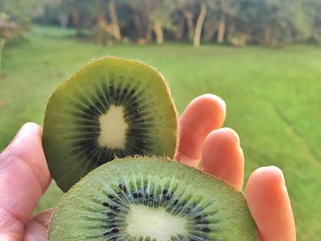 Kiwi e seus benefícios