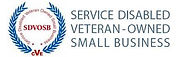 Service Diasbled Vertab Owned Small Busi