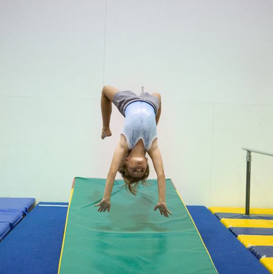 ARC Gymnast