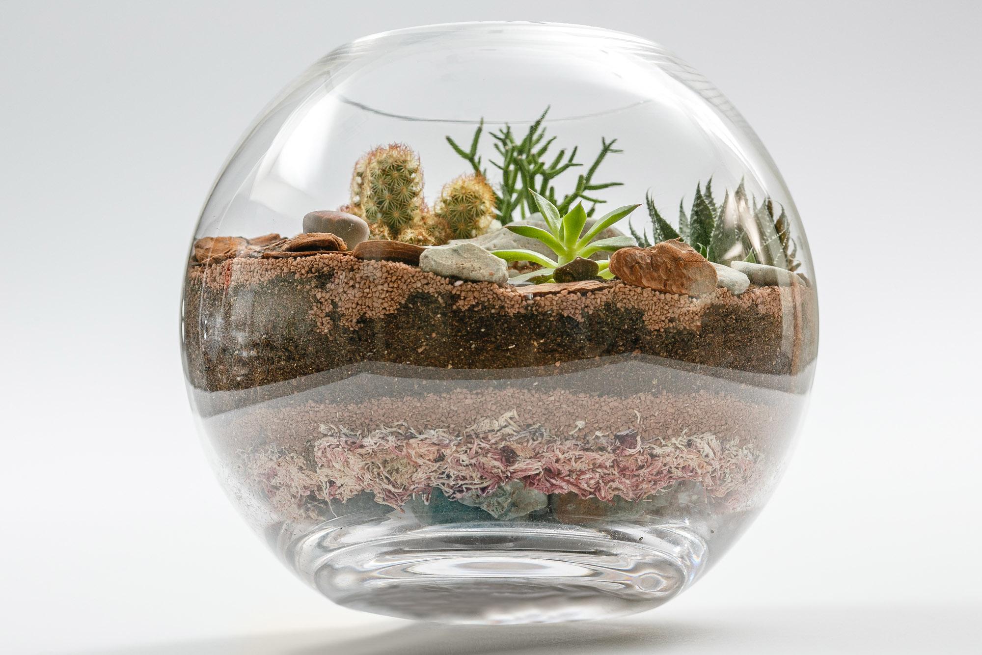Foto de Produto - Vaso de Plantas