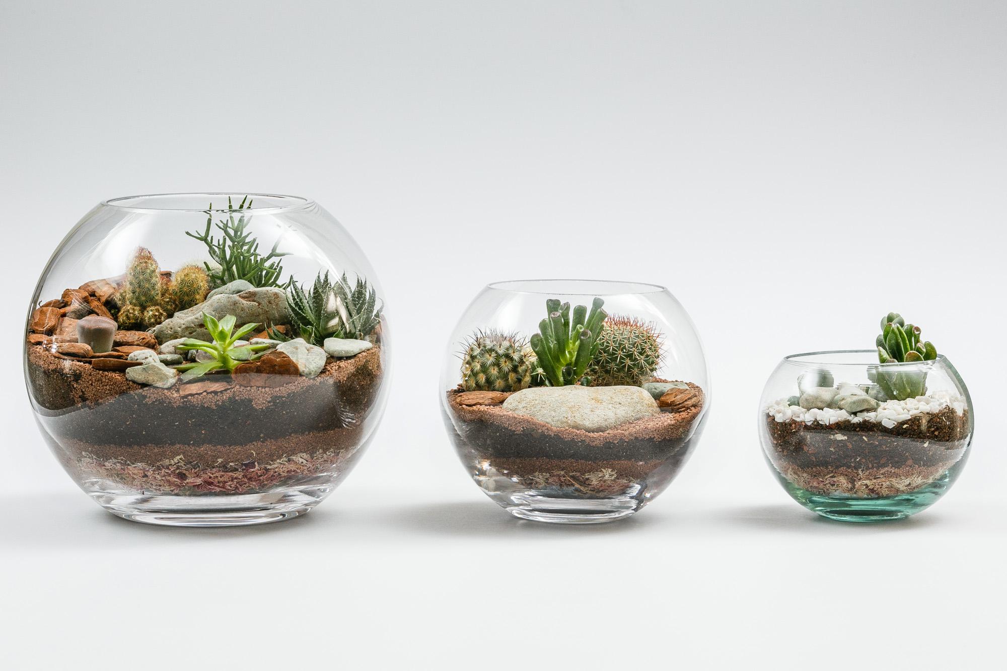 Foto de Produto - Vasos de Plantas