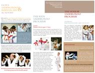 Lion's Taekwondo_Brochure_Inside