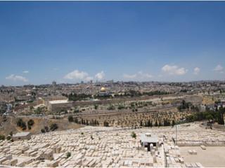 Bli med til Israel og Beit Skandinavia 30.mars - 7. april 2016.