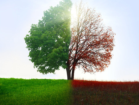 Conscious Versus Unconscious Change: How to Navigate the Inevitable